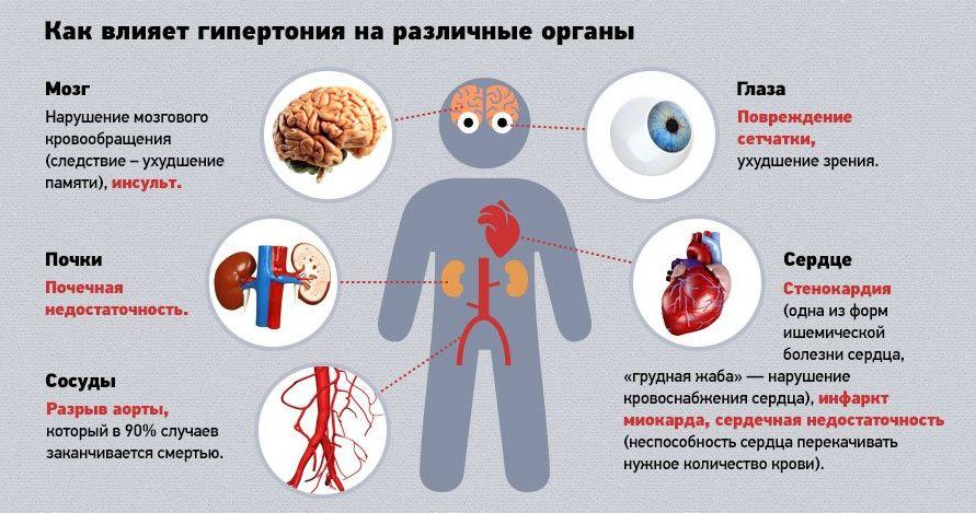 magas vérnyomás 2 fokos ok a magas vérnyomás kanephronja