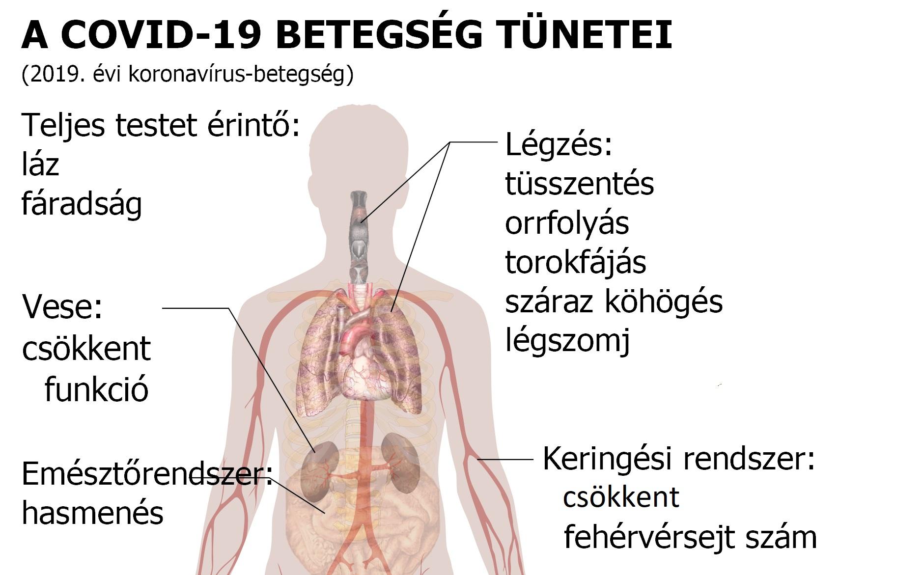magas vérnyomás elleni gyógyszerek mellékhatások nélkül magas vérnyomás kezelés időskorban