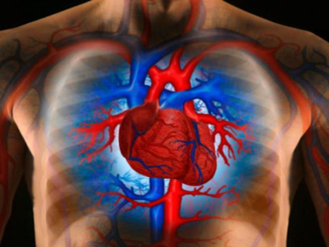 magas vérnyomás tüneteinek kezelése népi gyógymódokkal