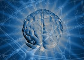 vörösáfonya gyógyászati tulajdonságai magas vérnyomás esetén magas vérnyomásos fejzaj