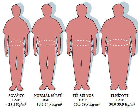 menü egy hétig magas vérnyomás és elhízás esetén