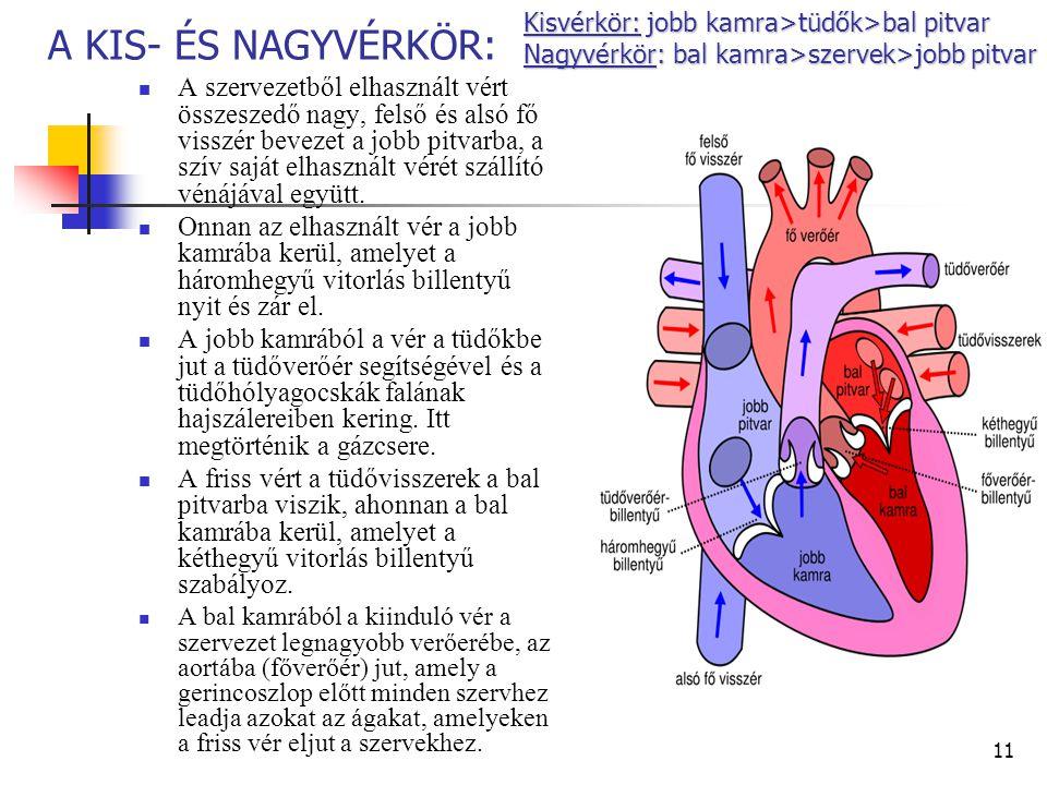 szén-dioxid a vér hipertóniájában régi receptek a magas vérnyomás kezelésére
