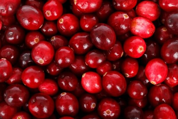 vörösáfonya gyógyászati tulajdonságai magas vérnyomás esetén