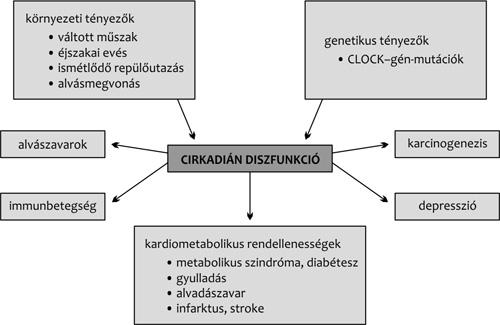 cirkadián ritmusok és magas vérnyomás gyógyszer előállítása magas vérnyomás ellen