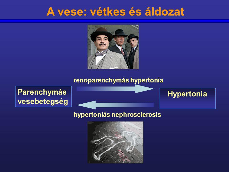 vese parenchymás hipertónia
