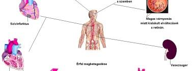 magas vérnyomás betegség 2 kockázat 3 kockázat jóddal járó magas vérnyomás kezelési rendje